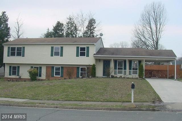 815 Mosby Hollow Drive Image #1