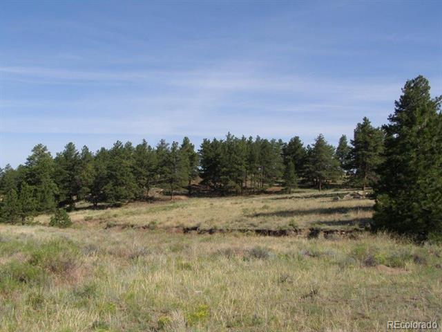 Lot 7-map 20 To Be Determined Westcliffe, CO 81252