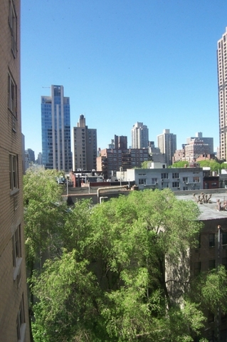 446 East 86th Street, Unit 10G Image #1
