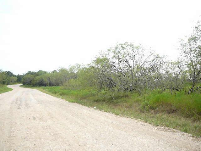 223 Sleepy Meadow Drive Runaway Bay, TX 76426