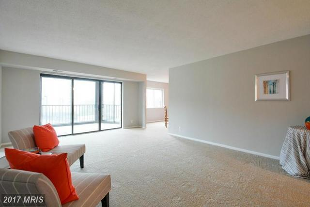 5902 Mount Eagle Drive, Unit 208 Image #1