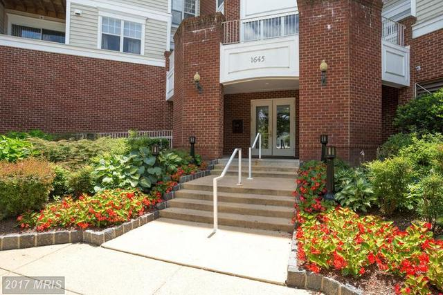 1645 International Drive, Unit 316 Image #1
