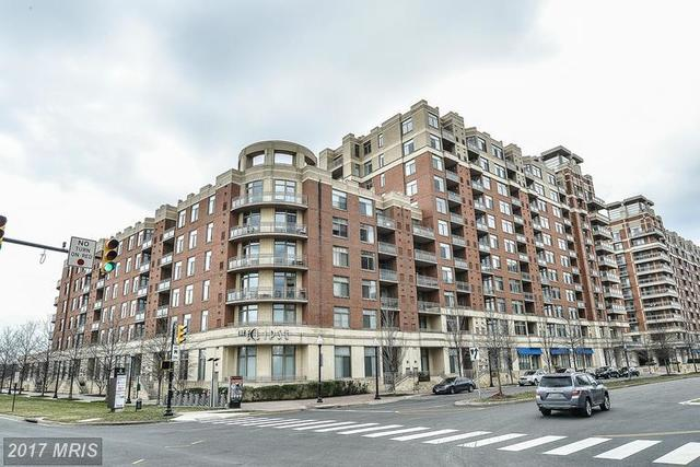 3650 Glebe Road, Unit 657 Image #1