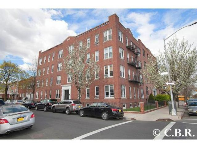 1489 East 8th Street, Unit B3 Image #1