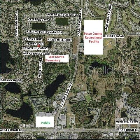 22703 Penny Loop, Land O Lakes, FL 34639 | Compass