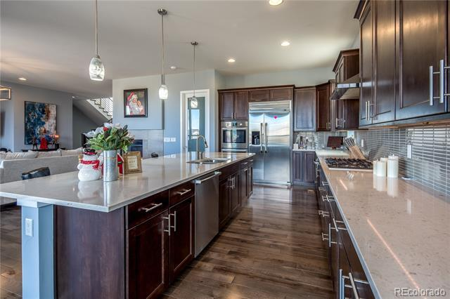 10461 North Sky Drive Lone Tree, CO 80124
