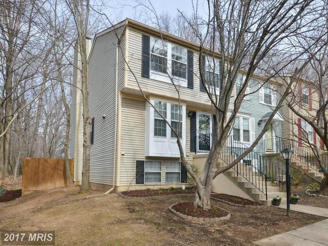 11778 Bayfield Court Image #1
