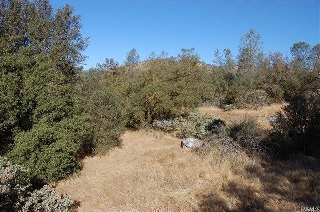 0 Deep Forest Drive Coarsegold, CA 93614