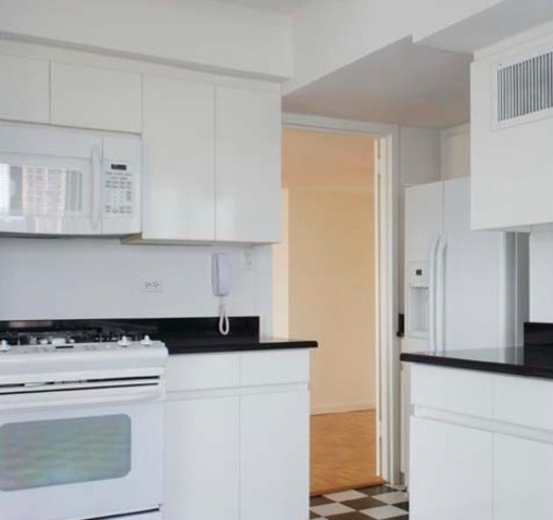 501 East 87th Street, Unit 2B Image #1