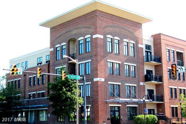 181 Reed Avenue East, Unit 309 Image #1