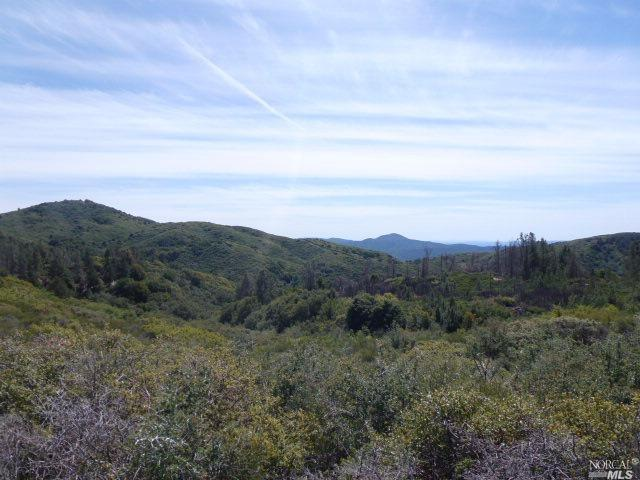 0 Pine Mountain Road Hopland, CA 95449