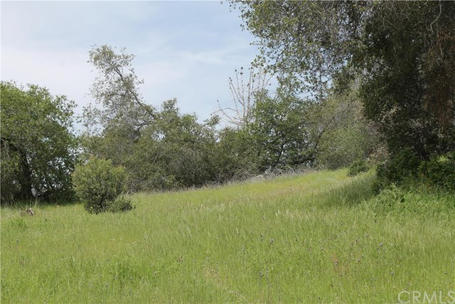 1 Ashworth Road Mariposa, CA 95338