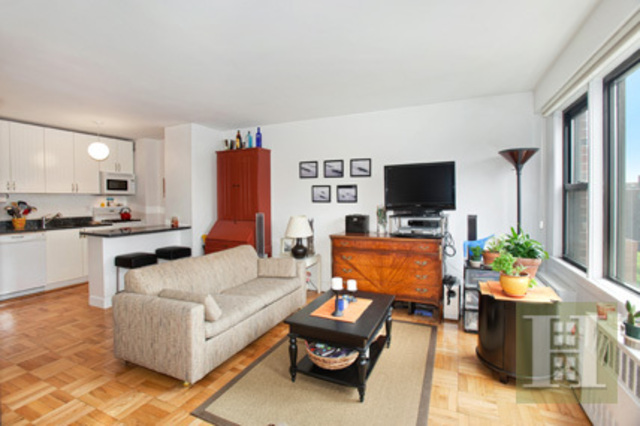 245 East 24th Street, Unit 11J Image #1
