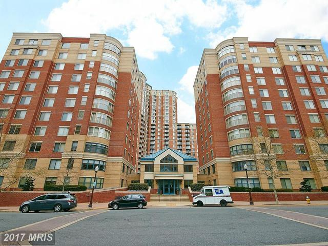 3835 9th Street North, Unit 406W Image #1