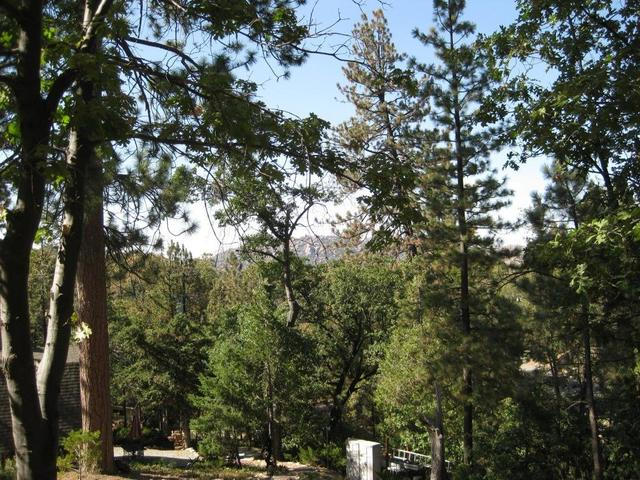 0 Brook Lane Lake Arrowhead, CA 92352