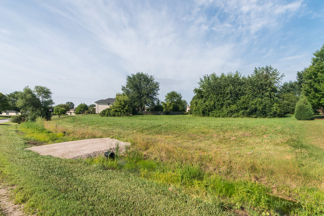 192 Canvasback Lane Bloomingdale, IL 60108