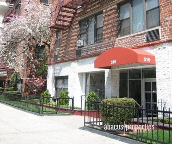 515 East 7th Street, Unit 4S Image #1