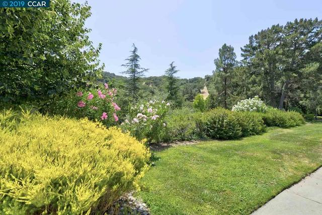 2224 Pine Knoll Drive, Unit 6 Walnut Creek, CA 94595
