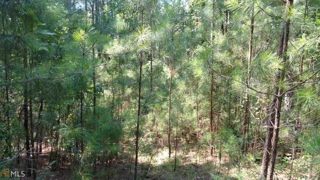8 Bluff Heights, Unit 8 Elberton, GA 30635