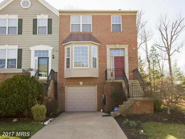 8641 Beech Hollow Lane Image #1