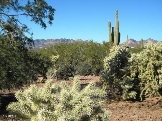 6300 East Lost Dutchman Boulevard Apache Junction, AZ 85119