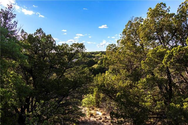 Tbd 10 Acres County Road 606 Tuscola, TX 79562