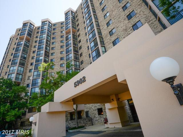 5902 Mount Eagle Drive, Unit 304 Image #1