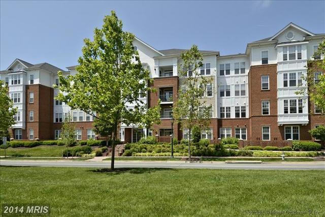 503 King Farm Boulevard, Unit 204 Image #1