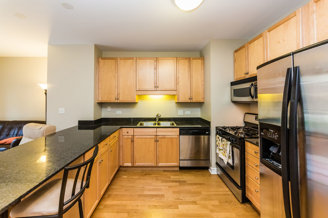 1101 South State Street, Unit 506 Chicago, IL 60605