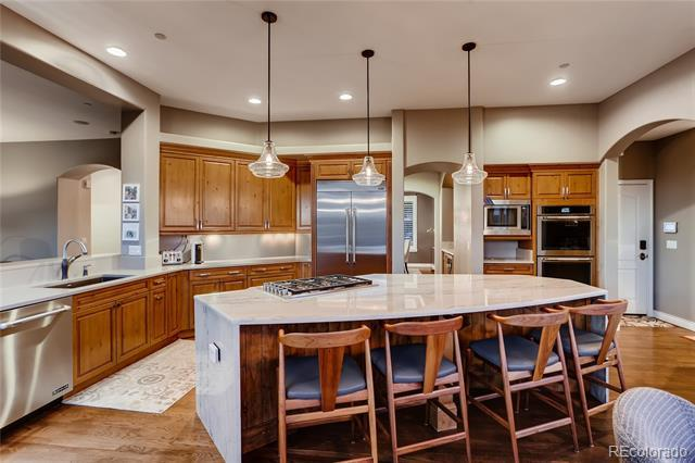 1080 Buffalo Ridge Way Castle Rock, CO 80108