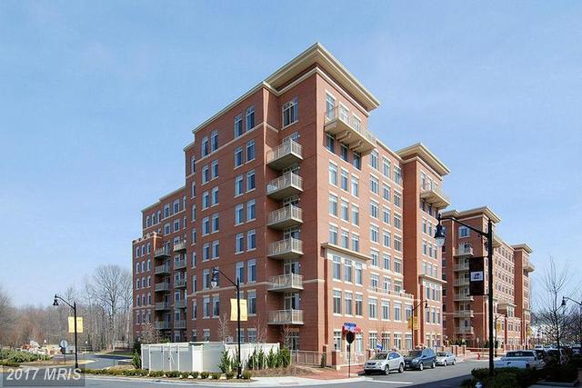 4480 Market Commons Drive, Unit 409 Image #1