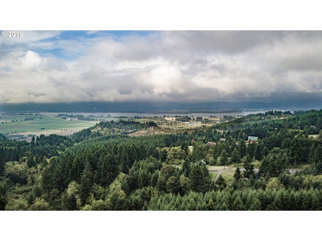 253 Harlequin Court Woodland, WA 98674