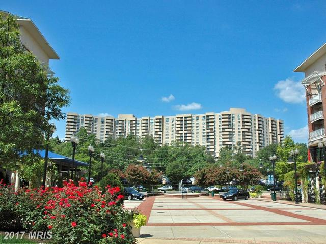 1101 Arlington Ridge Road, Unit 106 Image #1