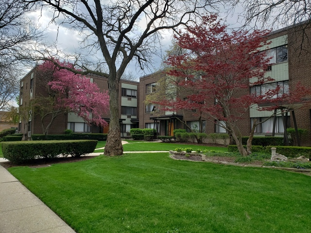3441 West Bryn Mawr Avenue, Unit 1W Chicago, IL 60659