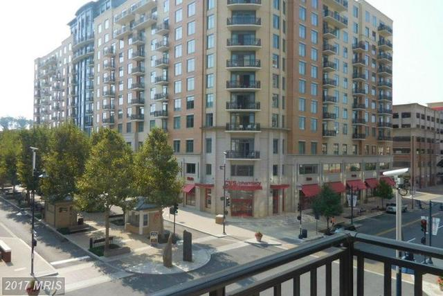 155 Potomac Passage, Unit 310 Image #1