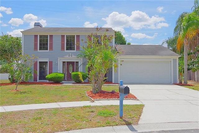 4502 Gossamer Court Tampa, FL 33624