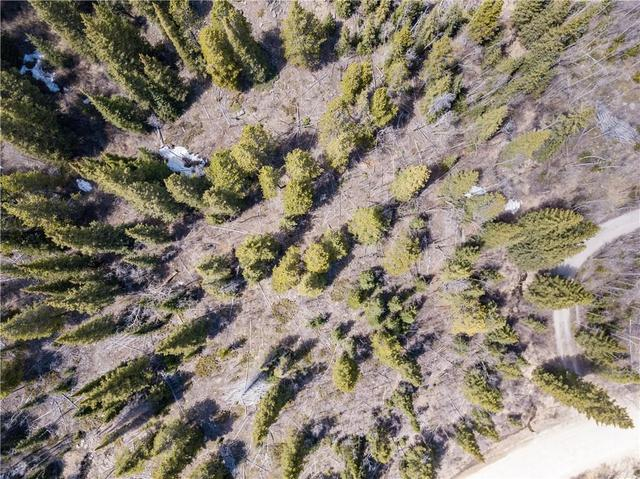 275 Mine Dump Road Alma, CO 80420