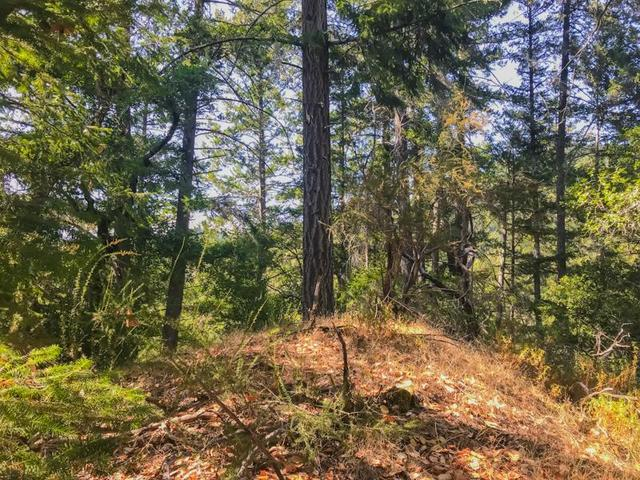 Lot 39 Logan Creek Road Boulder Creek, CA 95006