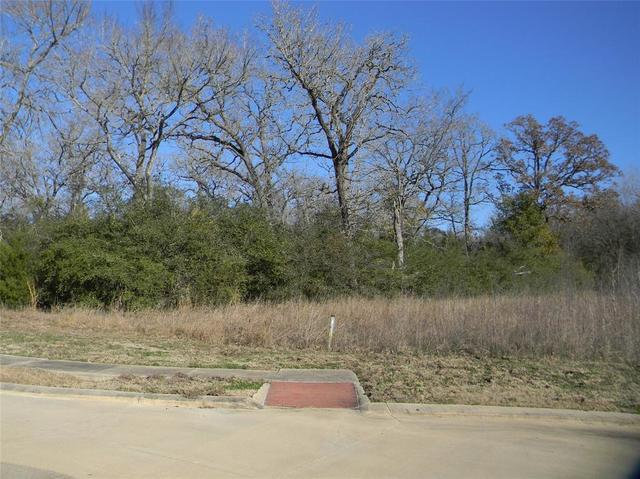 3408 Chinquapin Court Bryan, TX 77807