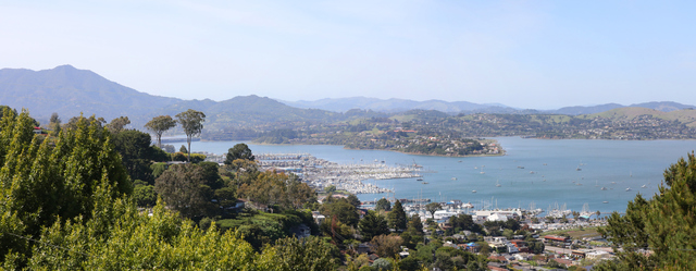 175 Spencer Avenue Sausalito, CA 94965