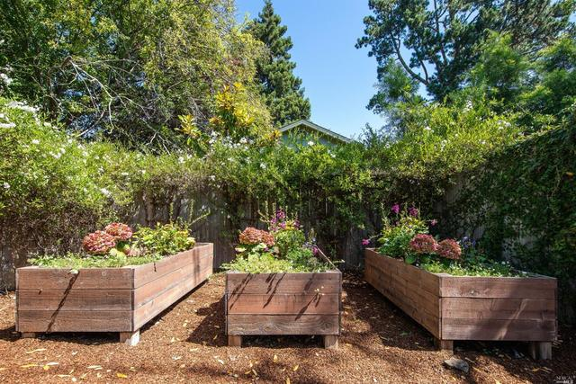 495 East Blithedale Avenue Mill Valley, CA 94941