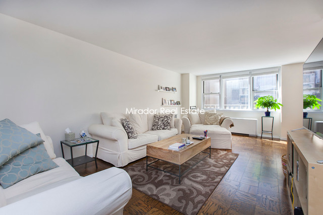 245 East 19th Street, Unit 2H Image #1