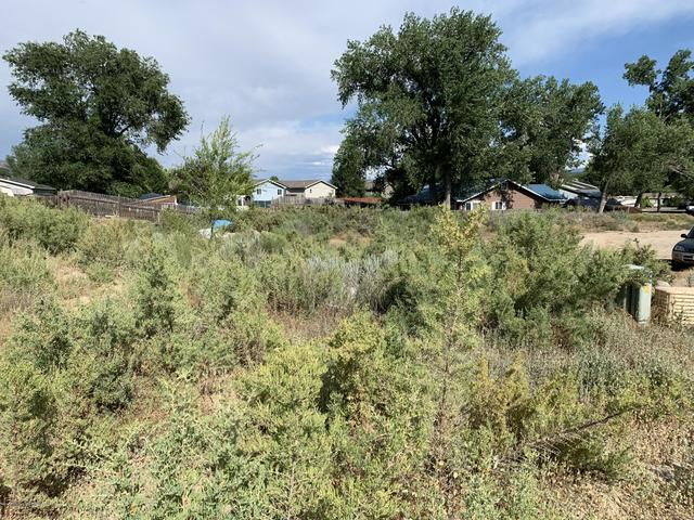 347 Dogwood Drive Silt, CO 81652