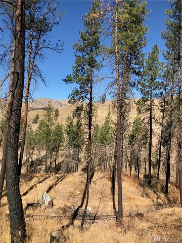 41-c French Creek Road Methow, WA 98846