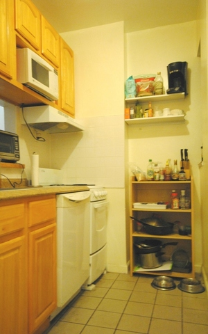 117 West 15th Street, Unit 4C Image #1