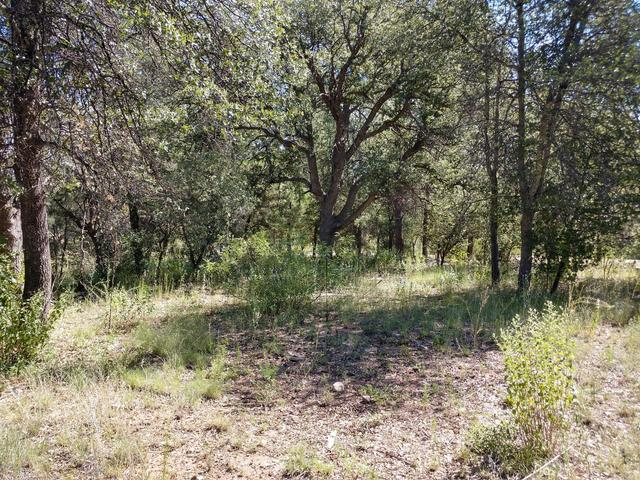 134 Rifle Barrel Road Young, AZ 85554