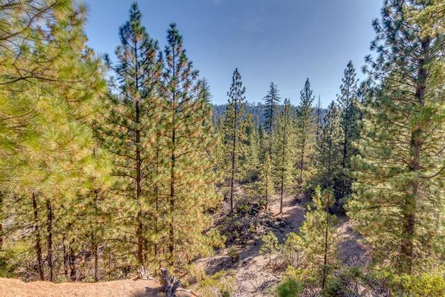 4461 Meadowlark Way Placerville, CA 95667