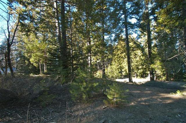 0 Heartwood Lane Shaver Lake, CA 93664