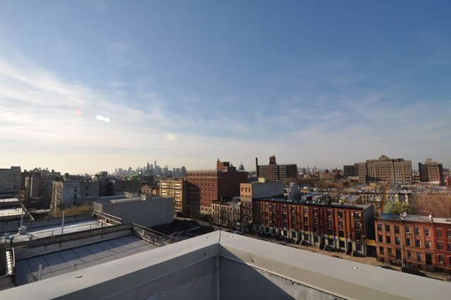 527 Lincoln Place, Unit 204 Brooklyn, NY 11238