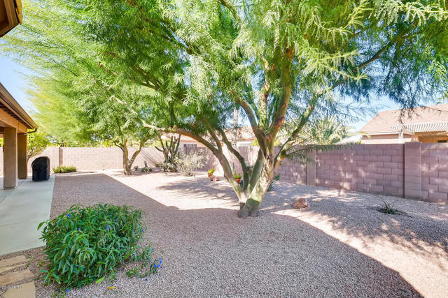 1052 East Winged Foot Drive Chandler, AZ 85249